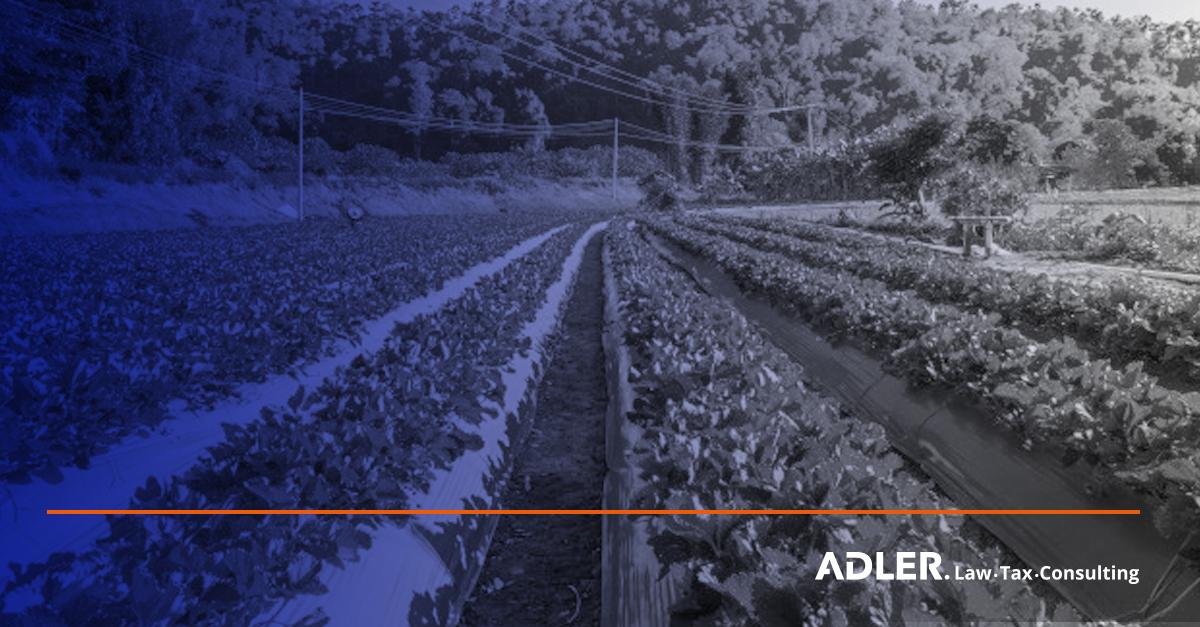 Brasil e Chile oficializam acordo inédito na América do Sul de certificação de produtos orgânicos